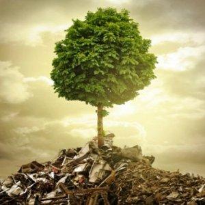 curso-online-tecnico-profesional-en-contaminacion-del-suelo-y-recuperacion-de-espacios-degradados