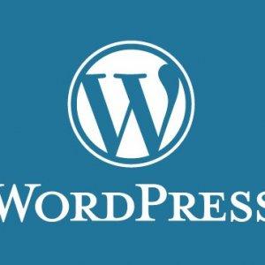 curso-online-tecnico-profesional-en-creacion-y-gestion-de-blog-web-2-0-con-wordpress-profesional