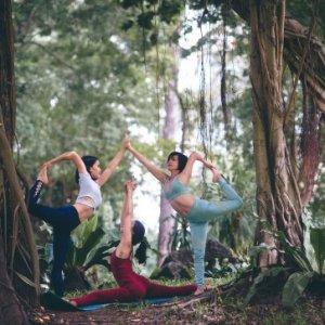curso-online-curso-superior-de-introduccion-al-yoga-conciencia-y-creatividad