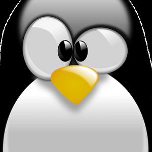 curso-online-curso-superior-linux-nivel-basico