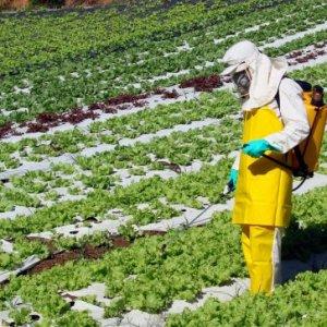 curso-aplicacion-de-productos-biocidas-y-fitosanitarios-nivel-basico