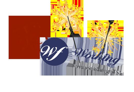 Working Formación Integral y  HubZGZ colaboran