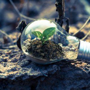 curso-online-tecnico-profesional-en-gestion-medioambiental-une-en-iso-140012015